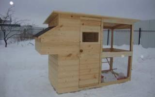 Куры на даче разведение кур на даче зимой
