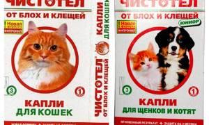 Капли Чистотел от блох для кошек