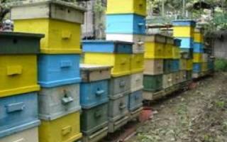 Альпийская системы пчеловодства
