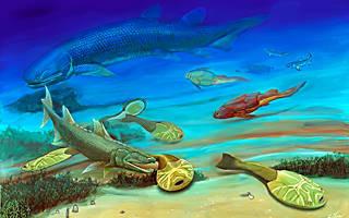 Вс о вымерших рыбах как выглядели акантоды