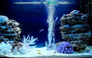 Тихий компрессор для аквариума