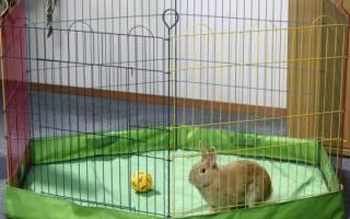 Вольер для декоративных кроликов