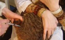 Почему кот хромает после укола