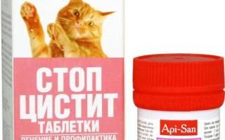 Стоп-цистит для котов