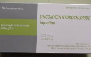 Линкомицин для кошек