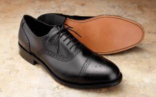 Как и чем вывести запах кошачьей мочи из обуви