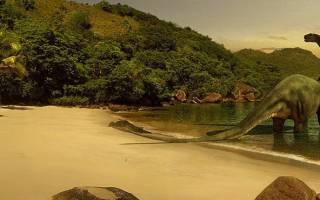 Удивительные факты о динозаврах — 24СМИ