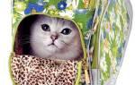Сумка-переноска для кошек своими руками