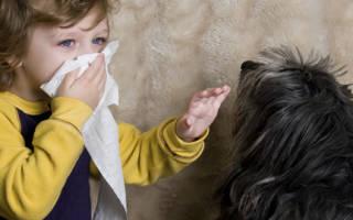 Аллергия на шерсть животных у детей