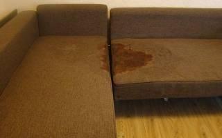 Как убрать запах мочи с дивана