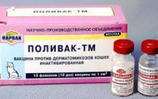 Поливак-тм вакцина для собак и кошек от лишая