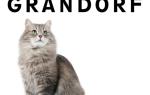 Корм Грандорф (Grandorf) для кошек